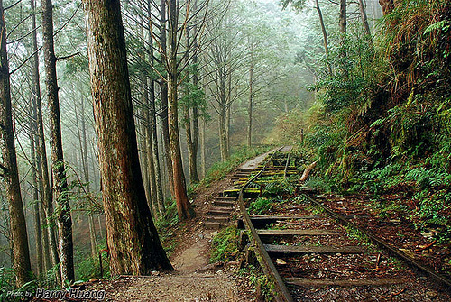宜蘭包車旅遊|太平山森林、懷古步道、鳩之澤溫泉泡湯,兩天一夜包車推薦